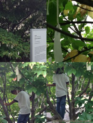 Wish Tree in The Sculpture Garden